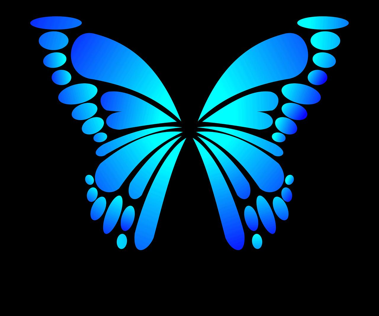 butterfly-2028591_1280(1)